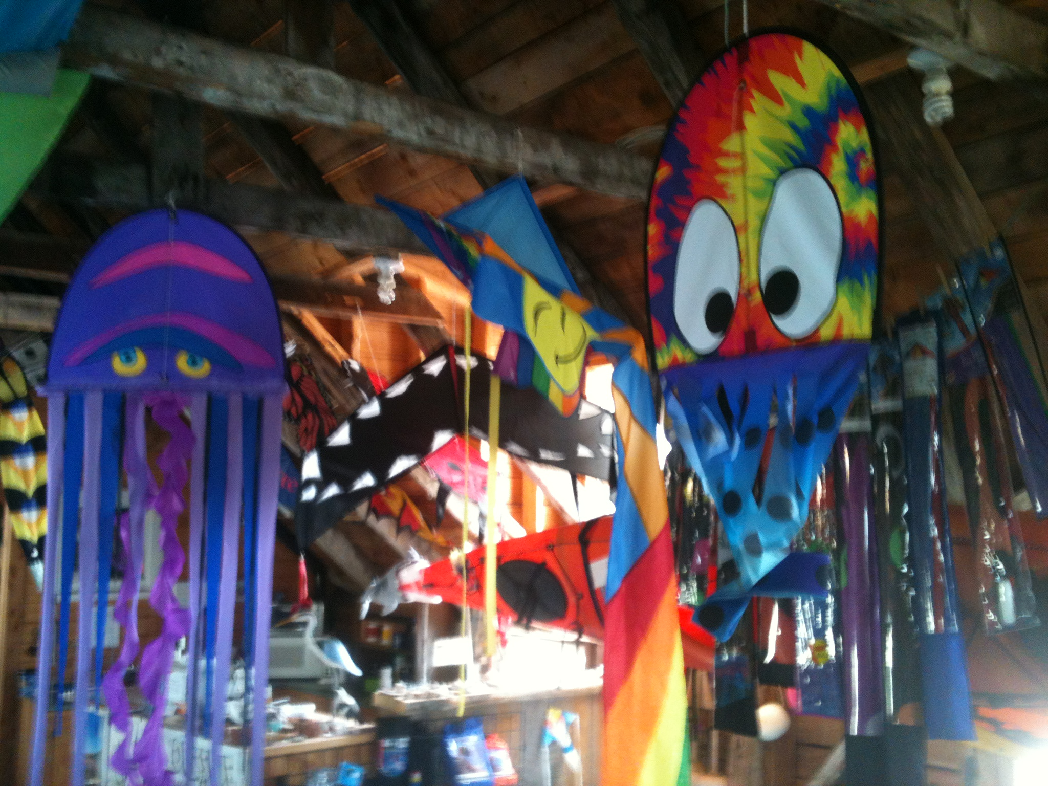 Kites for Sale - Outside Expeditions